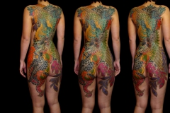 dragon-phoenix-backpiece
